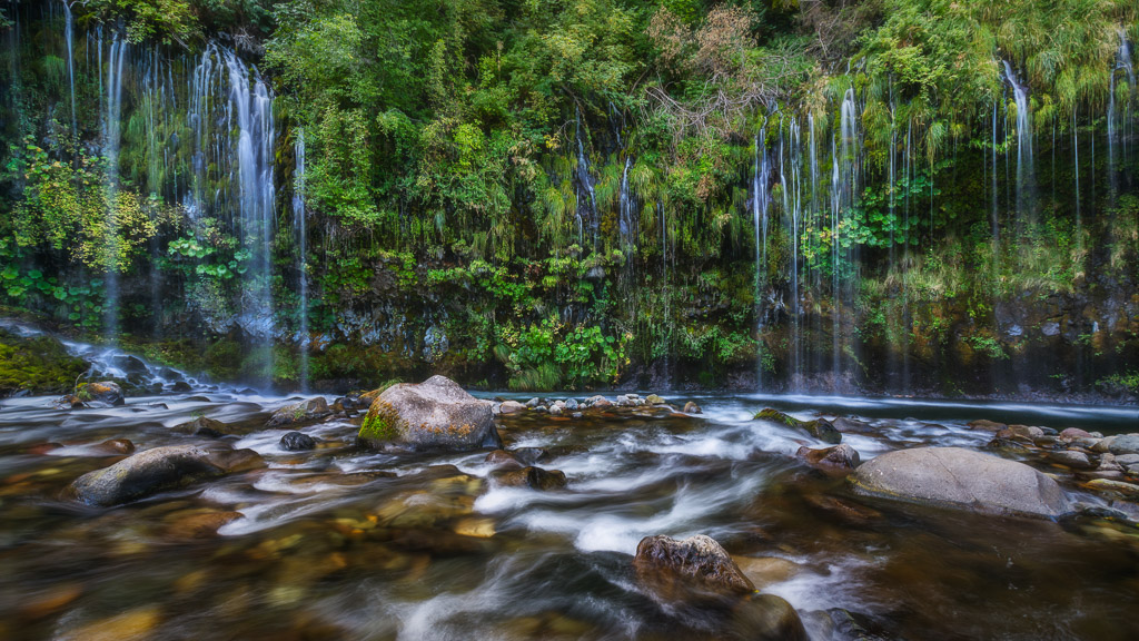 Long exposure photo of Mossbrae Falls waterfall and river. Wall of ferns and other lush plants with water seeping out.