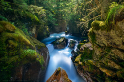 Photo of a river cutting through a lush canyon in Glacier National Park, Montana